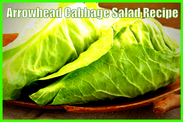 arrowhead_cabbage_salad_recipe