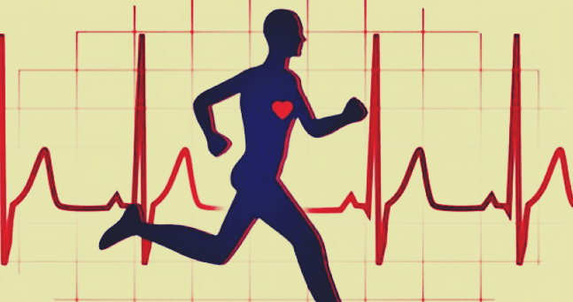 heart-rate-control-during-workout