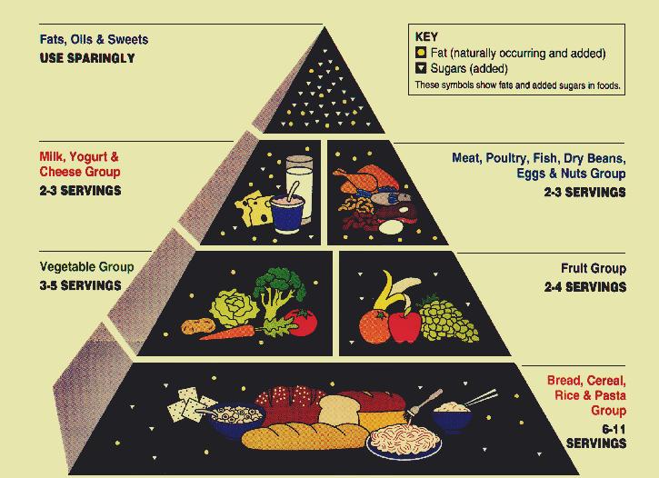 food plates