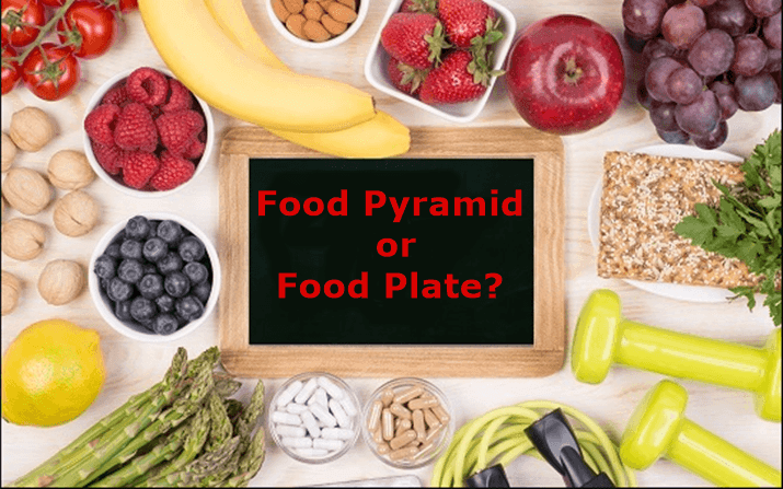 Food Pyramid or Food Plate? Which one is better
