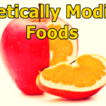 Genetically Modified Food Definition