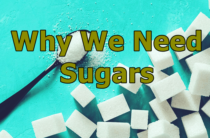Why we need Sugars?