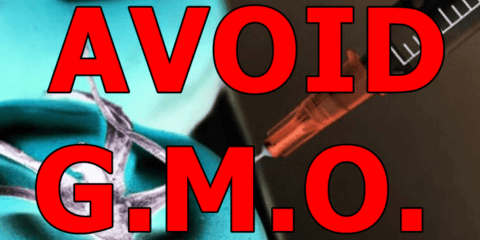 avoid-genetically-modified-foods