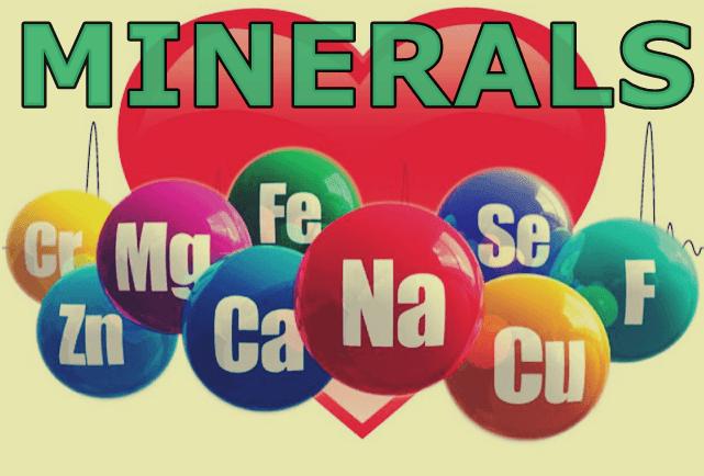 Minerals Nutrition