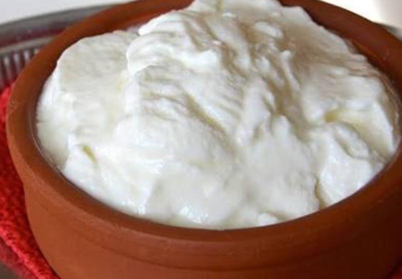 What are the health benefits of yogurt