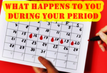 what happens in regl period
