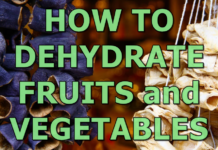 how-todehydrate-fruits-vegetables.