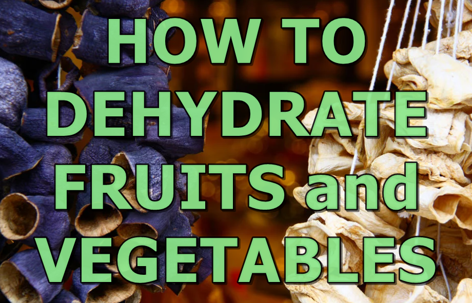 How to dehydrate fruits and vegetables? WHAT ARE THE METHODS?