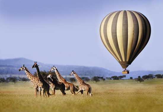 hot air balllon ride serengeti